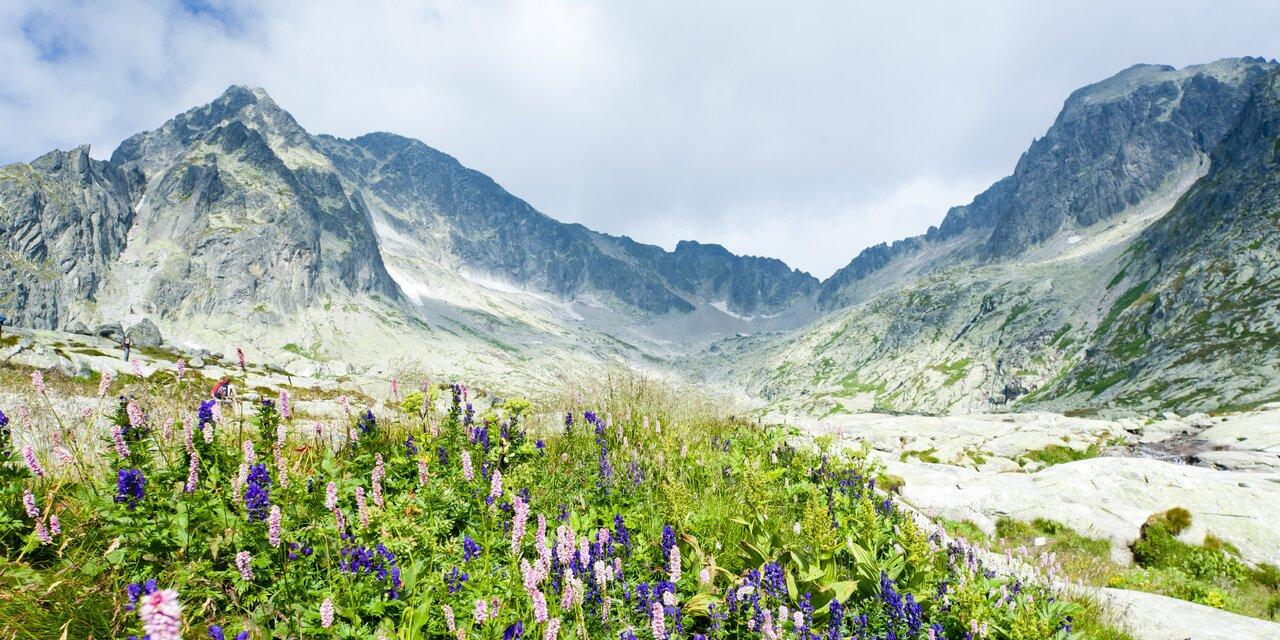 Objevte Vysoké Tatry