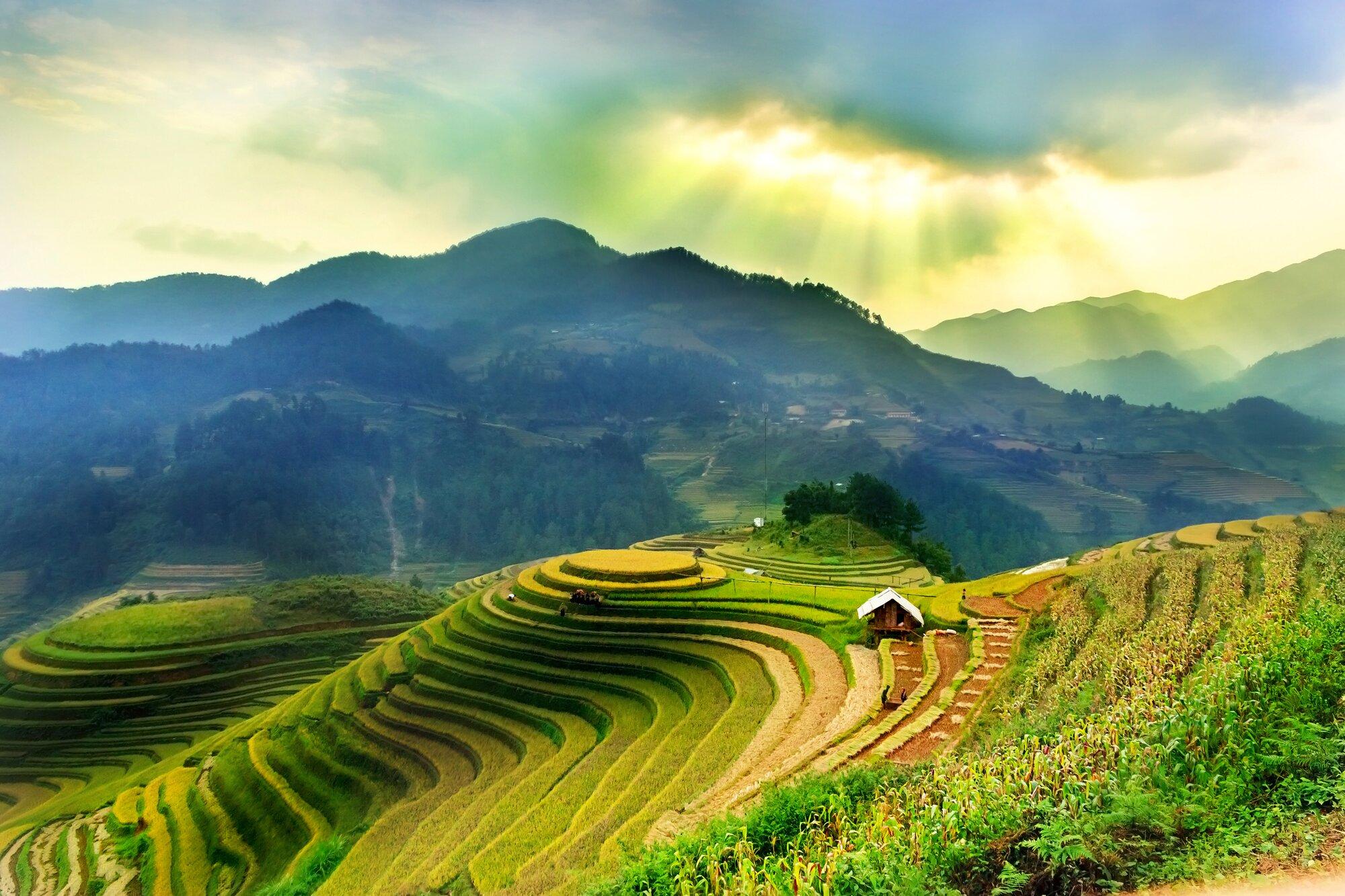 Představujeme vám Vietnam, zemi rýžových polí a polévky Pho ...