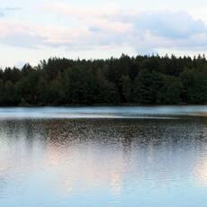 Ratmírovský rybník