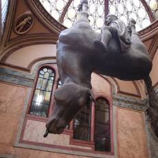 Kůň v Lucerně