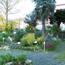 Arboretum Nové Město na Moravě