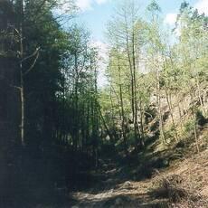Cikánský důl