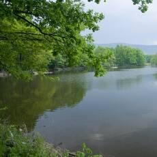 Velký rybník u Černé Vody