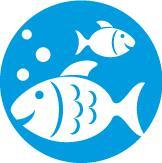 Ryby a rybičky