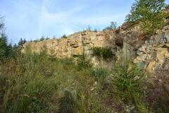 Kamenné řady u Kounova