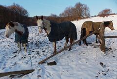 Westernový ranč pod Vartovňů v obci Jasenná