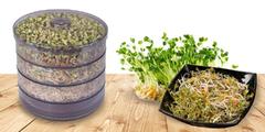 Třípatrová nakličovací biomiska a výběr z 19 semen
