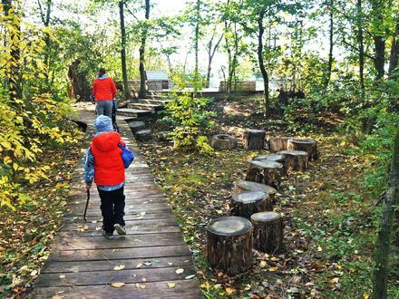 Podél rybníka dojdete k lesíku, ve kterém jsou hry pro děti, například jazykový kovový bubínek, prolézačka mraveniště, lana zavěšená mezi stromy a oblíbené tři zemní trampolíny.