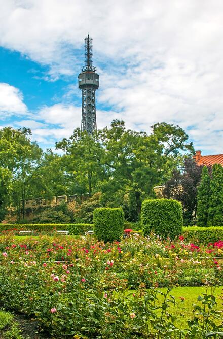 Po vystoupení z petřínské lanovky se ocitnete v krásné Růžové zahradě.