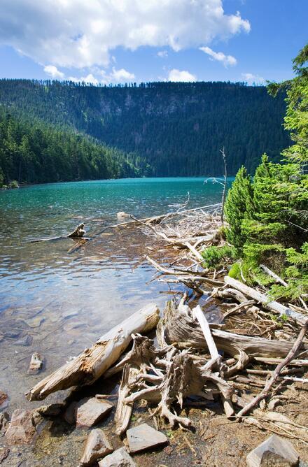 Objevte jezera na Šumavě.