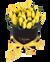 Černá oválná krabice žlutých tulipánů