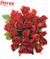 Kytice 25 růží El Toro (40 cm)