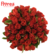 Kytice 55 růží El Toro (40 cm)