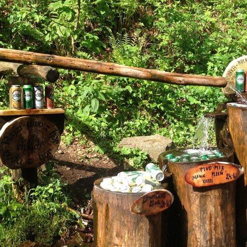Pěší výlet do Lesního baru Horní Lipová