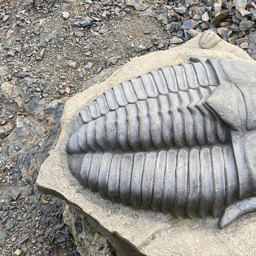 Naučná stezka Po stopě trilobita