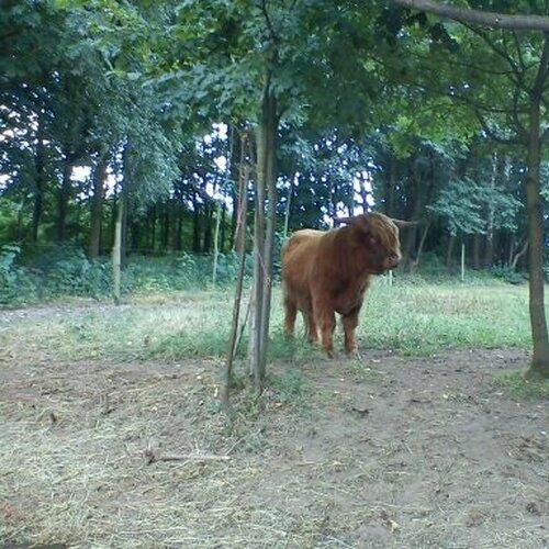 Zoopark Na Hrádečku u Jindřichova Hradce