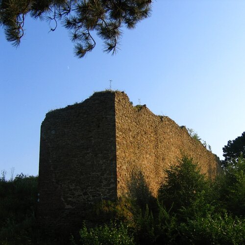 Zřícenina hradu Cvilín (Šelenburk)