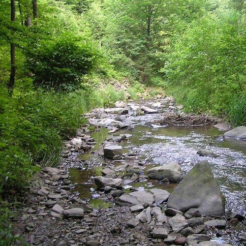 Naučná stezka údolí Moravské Sázavy