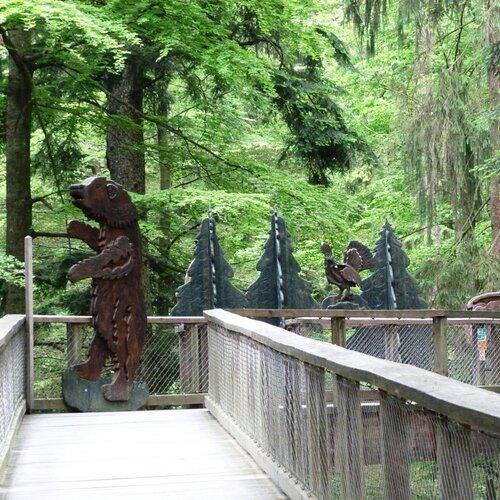 Stezka korunami stromů Baumwipfelpfad