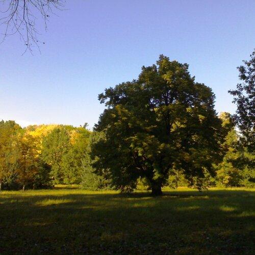 Arboretum a zookoutek