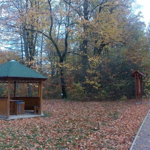 Arboretum Vysoké Chvojno