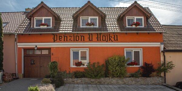 Penzion s vnitřním bazénem v malebné vinařské obci