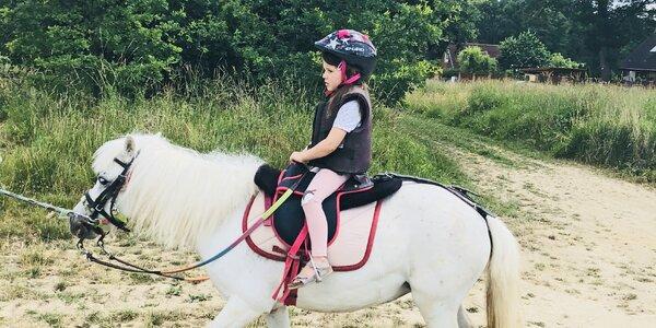 Jezdit na koni od čtyř let? Blogerka testuje jízdu na poníkovi