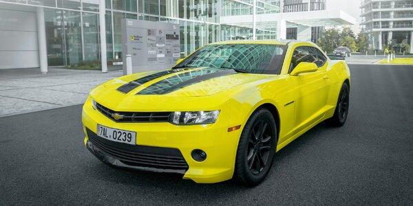 "Chevrolet Camaro ""Bumblebee"" až na dva dny"