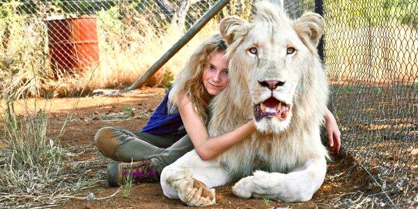 2 lístky do Lucerny na rodinný film Mia a bílý lev