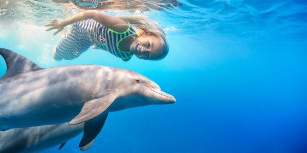 Snowboarding v poušti nebo plavání s delfíny. 6 tipů, kam v zimě na dovolenou