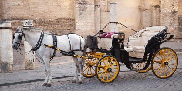 Romantická projížďka kočárem až pro 4 osoby