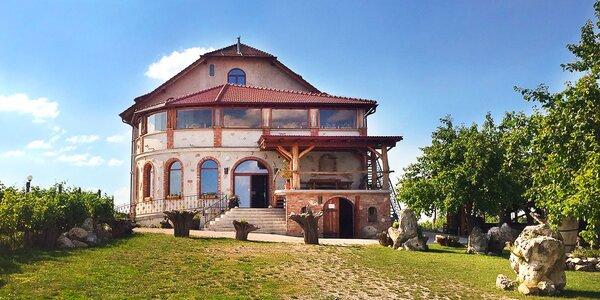Pobyt mezi vinicemi jižní Moravy: jídlo, degustace