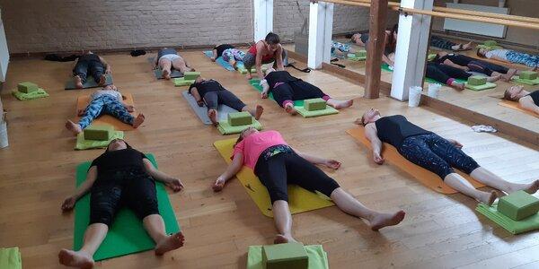 3 nebo 10 vstupů na cvičení TRX, Bosu, Jógy a další