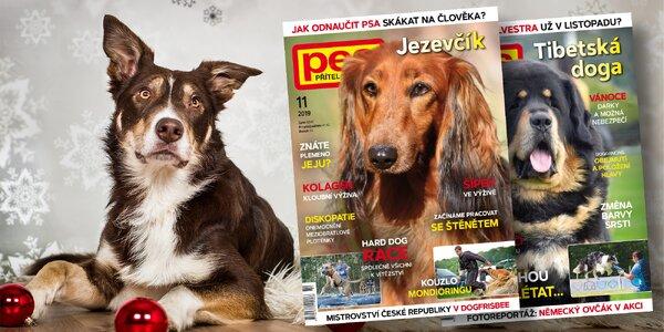 Roční předplatné časopisu Pes přítel člověka