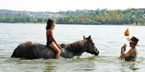 Vyjížďka, výcvik i plavení koní: 90 až 180 minut