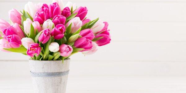 Voňavý barevný pugét holandských tulipánů