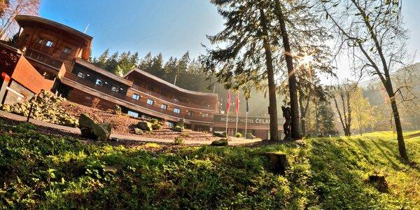 Relaxační pobyt v beskydském hotelu Čeladenka