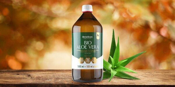 Pro silnější imunitu: 1 l aloe vera gelu s dužinou