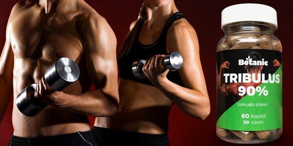 Kotvičník v kapslích pro svaly a testosteron