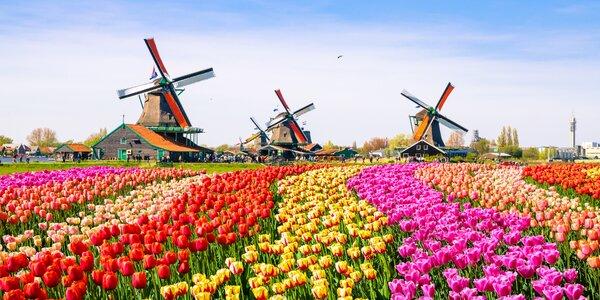 Jeden den v květinovém parku Keukenhof i návštěva Amsterdamu