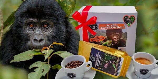 Balíčky kávy a kakaových bobů Mountain Gorilla