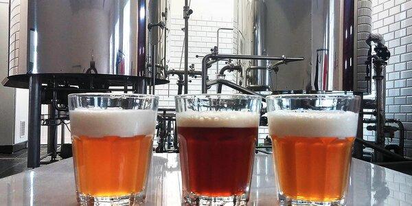 Prohlídka řemeslného pivovaru s ochutnávkou