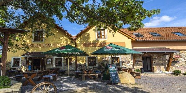 Relax u Znojma: jídlo, exkurze do Louckého kláštera