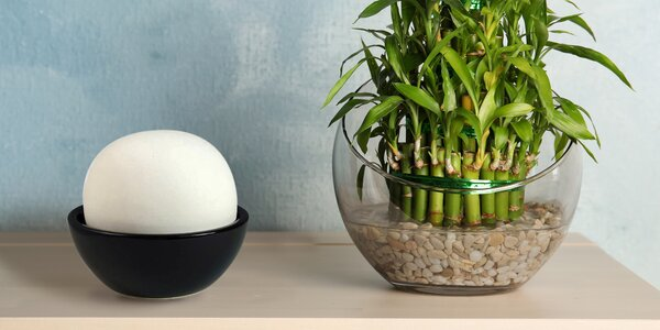 Přírodní a dekorační zvlhčovač vzduchu