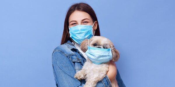 Koronavirus a domácí mazlíčci - vše, co musíte vědět