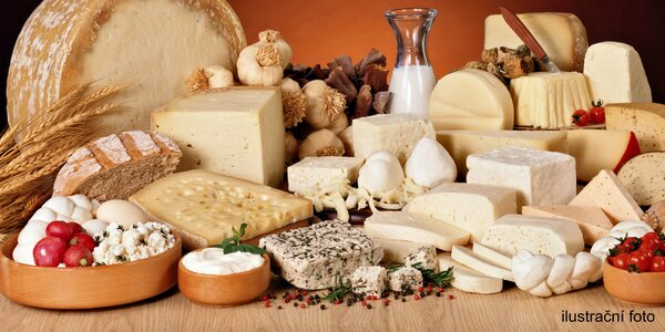 Kurz výroby sýrů, jogurtů a mléčných produktů