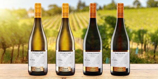 Moldavská vína samostatně i v setech až 6 lahví