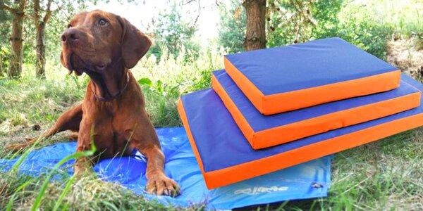 Chladicí podložka nebo matrace pro psy: 3 rozměry