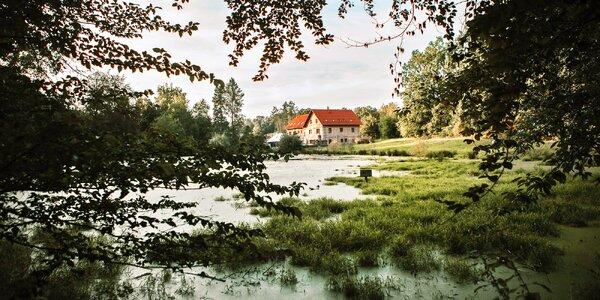 Kolínsko na úplné samotě u rybníka se snídaní