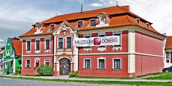 Muzeum Dobříš: vstupenky pro jednotlivce i rodinu